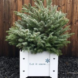 Amelie 'Let it snow' Christmas Planter